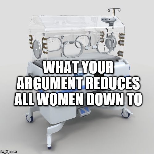 WHAT YOUR ARGUMENT REDUCES ALL WOMEN DOWN TO | made w/ Imgflip meme maker
