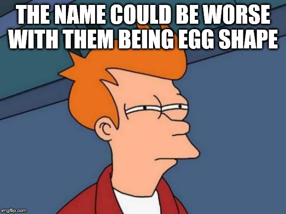 Futurama Fry Meme | THE NAME COULD BE WORSE WITH THEM BEING EGG SHAPE | image tagged in memes,futurama fry | made w/ Imgflip meme maker