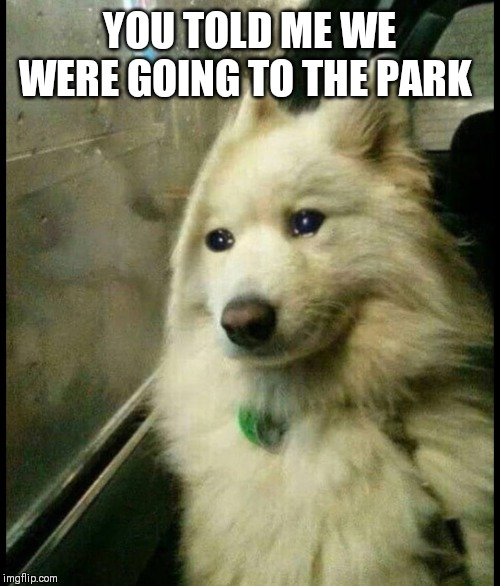 YOU TOLD ME WE WERE GOING TO THE PARK | made w/ Imgflip meme maker