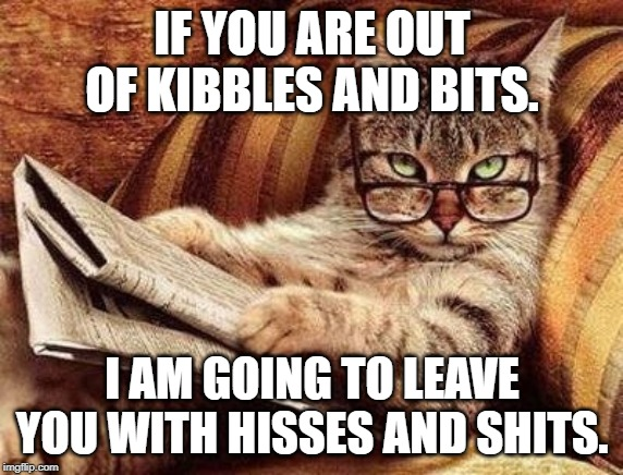 IF YOU ARE OUT OF KIBBLES AND BITS. I AM GOING TO LEAVE YOU WITH HISSES AND SHITS. | image tagged in smart cat | made w/ Imgflip meme maker