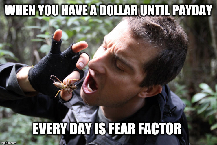 bear grylls eat bug | WHEN YOU HAVE A DOLLAR UNTIL PAYDAY EVERY DAY IS FEAR FACTOR | image tagged in bear grylls eat bug | made w/ Imgflip meme maker