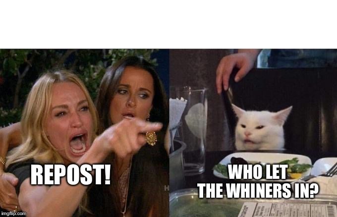 Two Women Yelling At A Cat | REPOST! WHO LET THE WHINERS IN? | image tagged in two women yelling at a cat | made w/ Imgflip meme maker