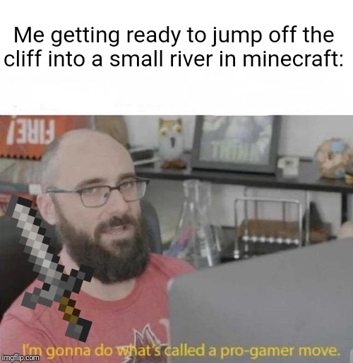 Pro Gamer move | Me getting ready to jump off the cliff into a small river in minecraft: | image tagged in pro gamer move | made w/ Imgflip meme maker