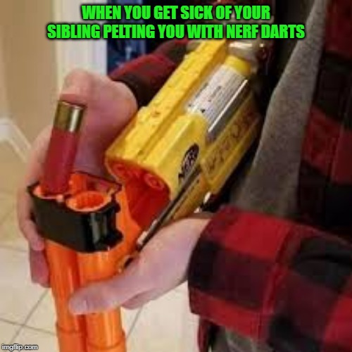 This is how the nerf war ends. | WHEN YOU GET SICK OF YOUR SIBLING PELTING YOU WITH NERF DARTS | image tagged in nerf,memes,funny | made w/ Imgflip meme maker
