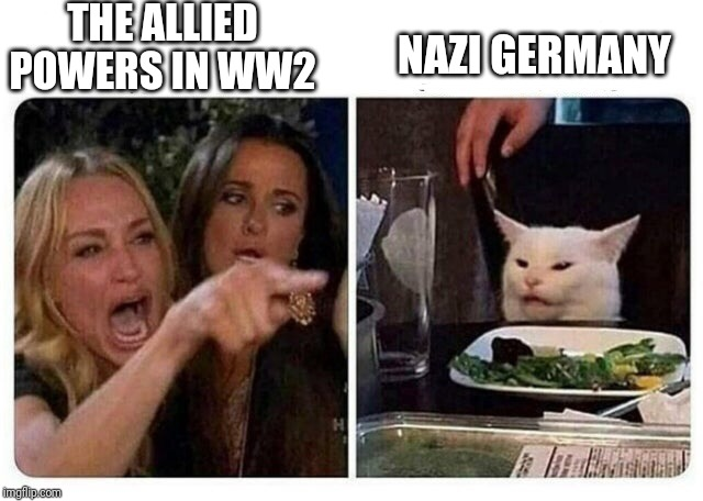 Cat at Dinner | THE ALLIED POWERS IN WW2 NAZI GERMANY | image tagged in cat at dinner,ww2,memes,funny,world war 2,history | made w/ Imgflip meme maker