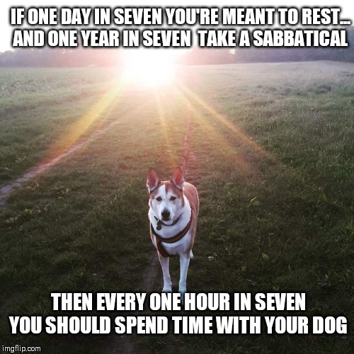 Spend time with your dog | IF ONE DAY IN SEVEN YOU'RE MEANT TO REST...  AND ONE YEAR IN SEVEN  TAKE A SABBATICAL THEN EVERY ONE HOUR IN SEVEN YOU SHOULD SPEND TIME WIT | image tagged in dogs,work life balance,inspirational | made w/ Imgflip meme maker