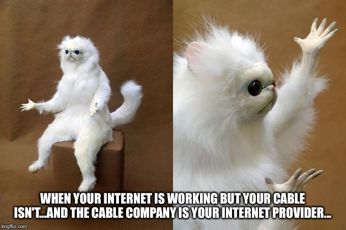 So confused... | WHEN YOUR INTERNET IS WORKING BUT YOUR CABLE ISN'T...AND THE CABLE COMPANY IS YOUR INTERNET PROVIDER... | image tagged in memes,persian cat room guardian | made w/ Imgflip meme maker