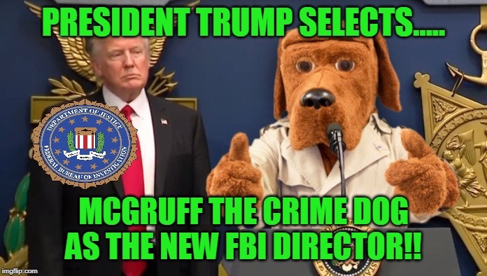 New FBI Director Selected by President Trump - Mcgruff the Crime Dog.... | PRESIDENT TRUMP SELECTS..... MCGRUFF THE CRIME DOG AS THE NEW FBI DIRECTOR!! | image tagged in memes,fbi director,president trump,united states of america | made w/ Imgflip meme maker