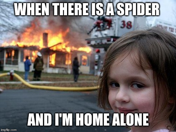 Disaster Girl Meme | WHEN THERE IS A SPIDER AND I'M HOME ALONE | image tagged in memes,disaster girl | made w/ Imgflip meme maker