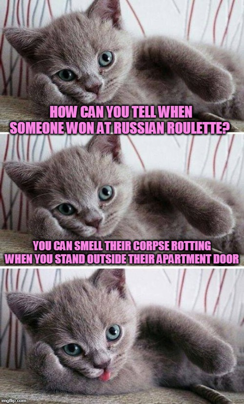 HOW CAN YOU TELL WHEN SOMEONE WON AT RUSSIAN ROULETTE? YOU CAN SMELL THEIR CORPSE ROTTING WHEN YOU STAND OUTSIDE THEIR APARTMENT DOOR | image tagged in bad pun kitten,russian roulette,memes,corpse party,cats | made w/ Imgflip meme maker