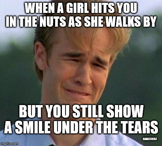 1990s First World Problems | WHEN A GIRL HITS YOU IN THE NUTS AS SHE WALKS BY BUT YOU STILL SHOW A SMILE UNDER THE TEARS CARLITO157 | image tagged in memes,1990s first world problems | made w/ Imgflip meme maker