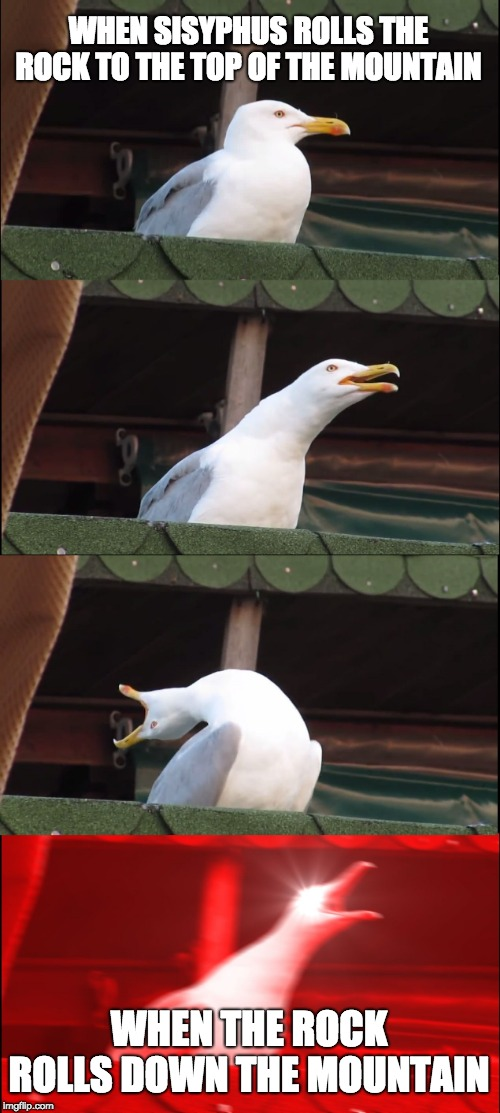 Inhaling Seagull Meme | WHEN SISYPHUS ROLLS THE ROCK TO THE TOP OF THE MOUNTAIN WHEN THE ROCK ROLLS DOWN THE MOUNTAIN | image tagged in memes,inhaling seagull | made w/ Imgflip meme maker