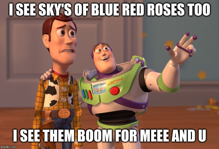 X, X Everywhere Meme | I SEE SKY'S OF BLUE RED ROSES TOO I SEE THEM BOOM FOR MEEE AND U | image tagged in memes,x x everywhere | made w/ Imgflip meme maker