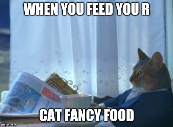 I Should Buy A Boat Cat | WHEN YOU FEED YOU R CAT FANCY FOOD | image tagged in memes,i should buy a boat cat | made w/ Imgflip meme maker