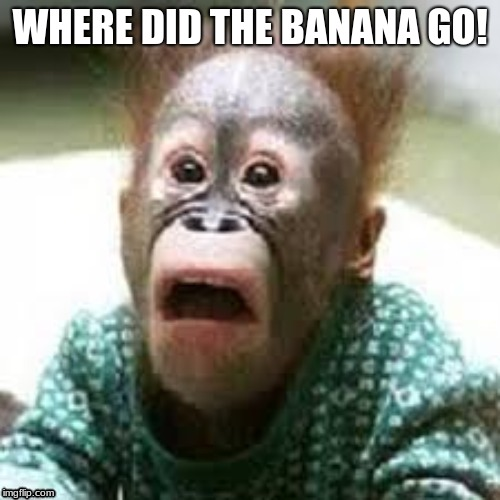 WHERE DID THE BANANA GO! | image tagged in banana | made w/ Imgflip meme maker