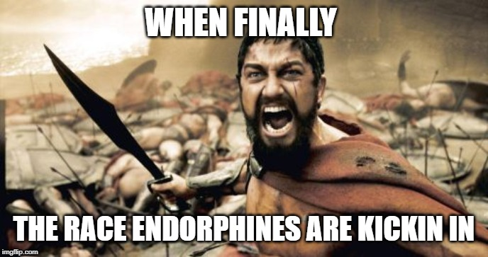 Sparta Leonidas Meme | WHEN FINALLY THE RACE ENDORPHINES ARE KICKIN IN | image tagged in memes,sparta leonidas | made w/ Imgflip meme maker