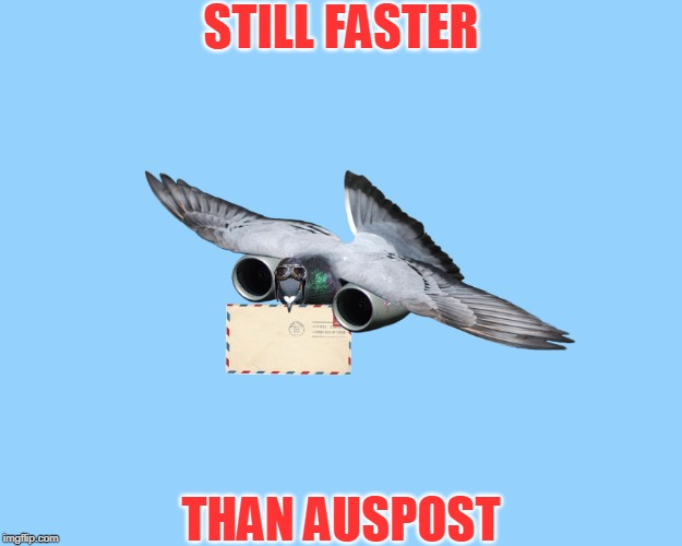 feckin' oath mate | STILL FASTER THAN AUSPOST | image tagged in memes,funny,jet propelled pigeon,australia,auspost | made w/ Imgflip meme maker