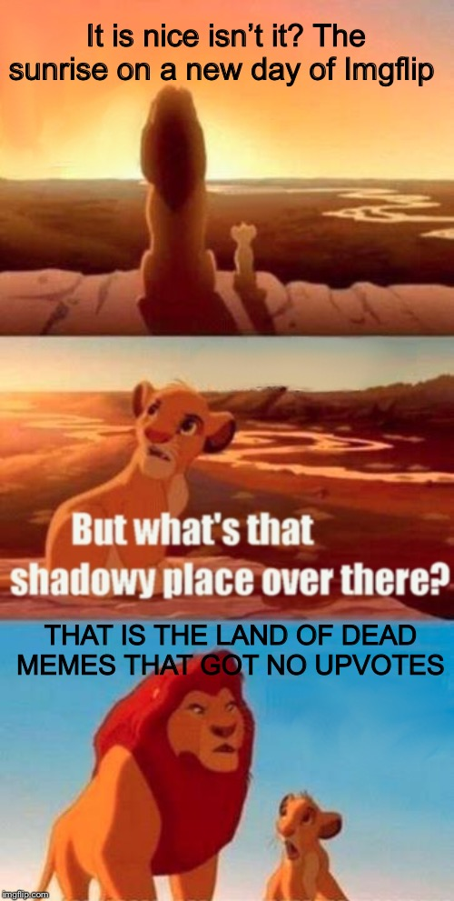Simba Shadowy Place Meme | It is nice isn't it? The sunrise on a new day of Imgflip THAT IS THE LAND OF DEAD MEMES THAT GOT NO UPVOTES | image tagged in memes,simba shadowy place | made w/ Imgflip meme maker