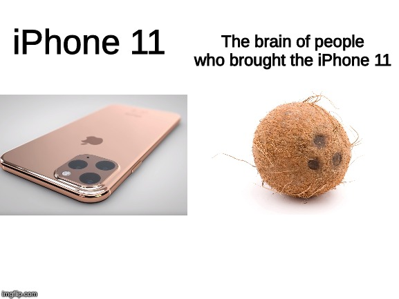 iPhone 11 coconut | iPhone 11 The brain of people who brought the iPhone 11 | image tagged in blank white template,iphone 11,iphone,coconut,memes | made w/ Imgflip meme maker