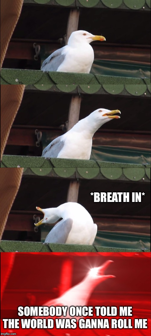 Inhaling Seagull Meme | *BREATH IN* SOMEBODY ONCE TOLD ME THE WORLD WAS GANNA ROLL ME | image tagged in memes,inhaling seagull | made w/ Imgflip meme maker