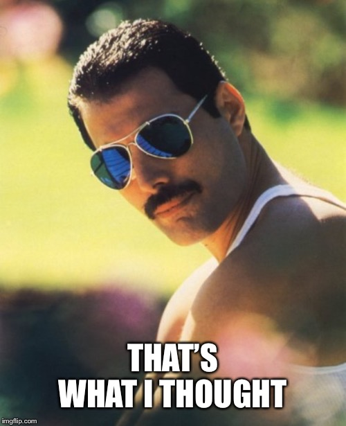 THAT'S WHAT I THOUGHT | image tagged in freddie mercury mr bad guy | made w/ Imgflip meme maker