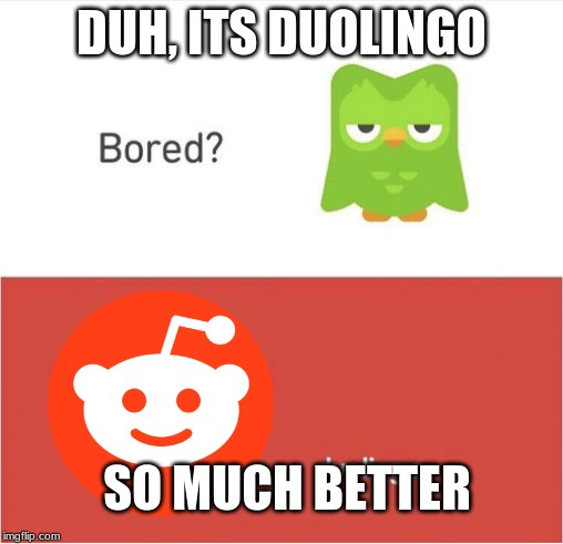 DUOLINGO BORED | DUH, ITS DUOLINGO SO MUCH BETTER | image tagged in duolingo bored | made w/ Imgflip meme maker