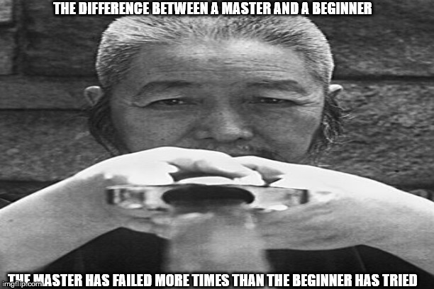 masters | THE DIFFERENCE BETWEEN A MASTER AND A BEGINNER THE MASTER HAS FAILED MORE TIMES THAN THE BEGINNER HAS TRIED | image tagged in tai chi sword | made w/ Imgflip meme maker