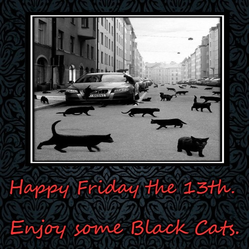 Black Cat Love (Friday the 13) | Happy Friday the 13th. | Enjoy some Black Cats. | image tagged in funny,demotivationals,cats,friday the 13th | made w/ Imgflip demotivational maker