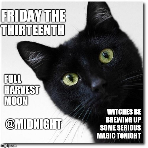 Witches Be Trippin.  Hehehehe | FRIDAY THE THIRTEENTH FULL HARVEST MOON WITCHES BE BREWING UP SOME SERIOUS MAGIC TONIGHT @MIDNIGHT | image tagged in black cats matter,midnight,friday the 13th,witches,trippin',memes | made w/ Imgflip meme maker