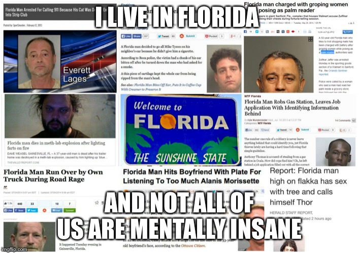 Florida Man |  I LIVE IN FLORIDA; AND NOT ALL OF US ARE MENTALLY INSANE | image tagged in insane,florida,florida man | made w/ Imgflip meme maker