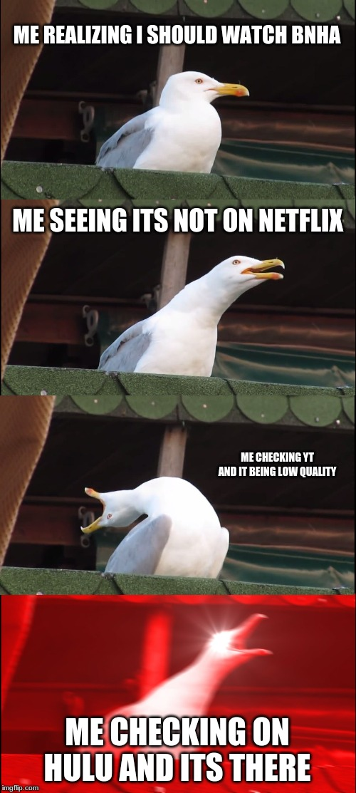 Inhaling Seagull | ME REALIZING I SHOULD WATCH BNHA ME SEEING ITS NOT ON NETFLIX ME CHECKING YT AND IT BEING LOW QUALITY ME CHECKING ON HULU AND ITS THERE | image tagged in memes,inhaling seagull | made w/ Imgflip meme maker