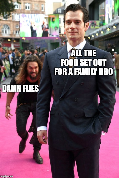 Every Time You Put It Out Smh.... |  ALL THE FOOD SET OUT FOR A FAMILY BBQ; DAMN FLIES | image tagged in jason momoa henry cavill meme | made w/ Imgflip meme maker
