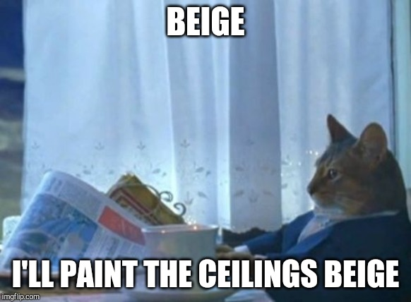 I Should Buy A Boat Cat | BEIGE I'LL PAINT THE CEILINGS BEIGE | image tagged in memes,i should buy a boat cat | made w/ Imgflip meme maker
