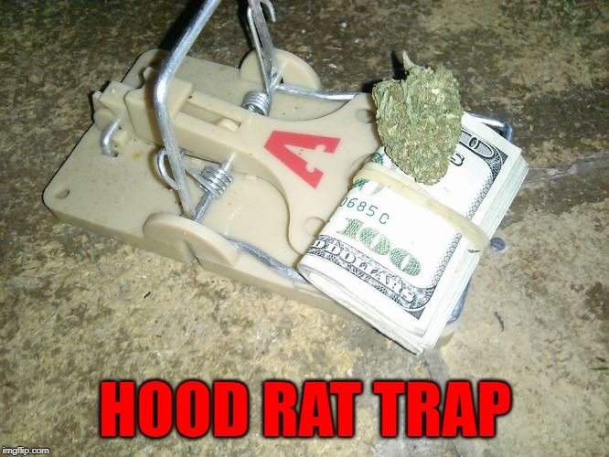 Get's 'em every time! | HOOD RAT TRAP | image tagged in hood rat trap,memes,traps,funny,hood rats,get 'em | made w/ Imgflip meme maker