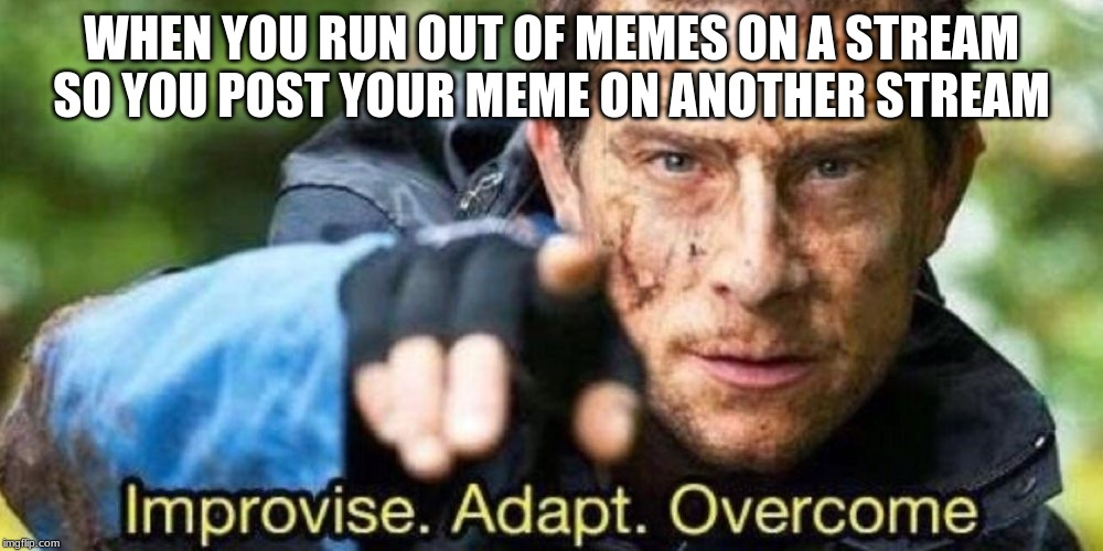 Improvise. Adapt. Overcome | WHEN YOU RUN OUT OF MEMES ON A STREAM SO YOU POST YOUR MEME ON ANOTHER STREAM | image tagged in improvise adapt overcome | made w/ Imgflip meme maker