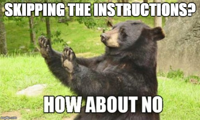 How About No Bear |  SKIPPING THE INSTRUCTIONS? | image tagged in memes,how about no bear | made w/ Imgflip meme maker