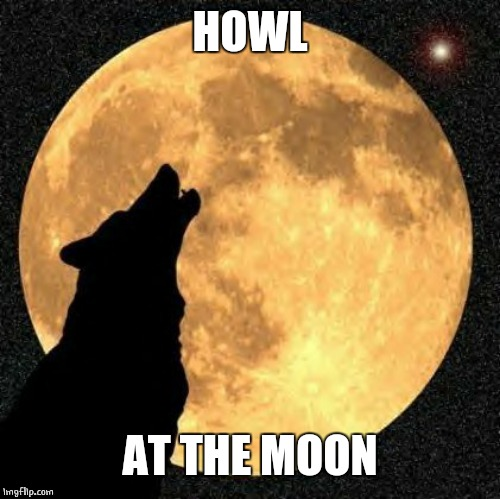 howlmoon | HOWL AT THE MOON | image tagged in howlmoon | made w/ Imgflip meme maker