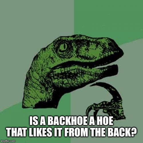 Philosoraptor Meme |  IS A BACKHOE A HOE THAT LIKES IT FROM THE BACK? | image tagged in memes,philosoraptor | made w/ Imgflip meme maker