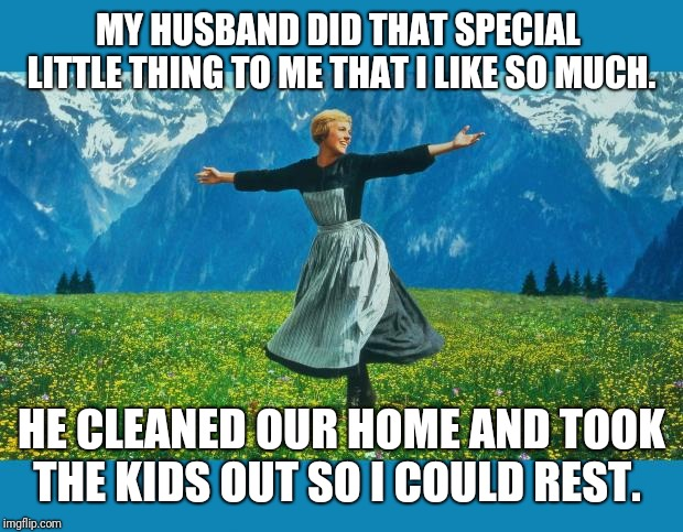the sound of music happiness | MY HUSBAND DID THAT SPECIAL  LITTLE THING TO ME THAT I LIKE SO MUCH. HE CLEANED OUR HOME AND TOOK THE KIDS OUT SO I COULD REST. | image tagged in the sound of music happiness | made w/ Imgflip meme maker