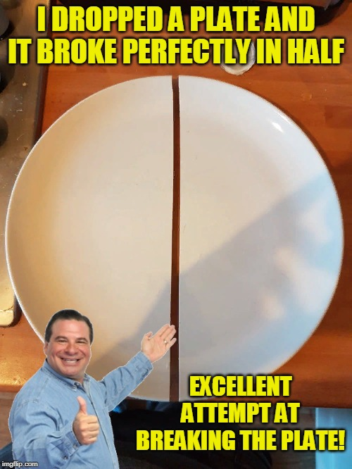 Perfectly Half! | I DROPPED A PLATE AND IT BROKE PERFECTLY IN HALF EXCELLENT ATTEMPT AT BREAKING THE PLATE! | image tagged in funny,fall,broke,perfection,flex seal,perfect | made w/ Imgflip meme maker