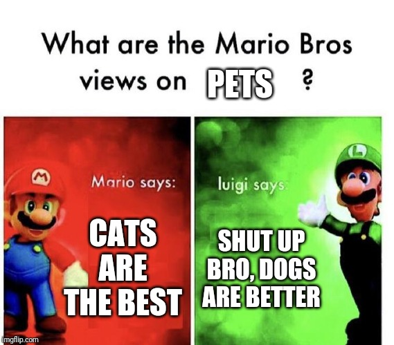Mario Bros Views | CATS ARE THE BEST SHUT UP BRO, DOGS ARE BETTER PETS | image tagged in mario bros views | made w/ Imgflip meme maker