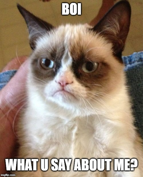 Grumpy Cat | BOI WHAT U SAY ABOUT ME? | image tagged in memes,grumpy cat | made w/ Imgflip meme maker
