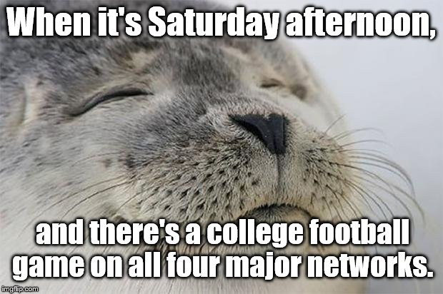 College football |  When it's Saturday afternoon, and there's a college football game on all four major networks. | image tagged in satisfied seal | made w/ Imgflip meme maker