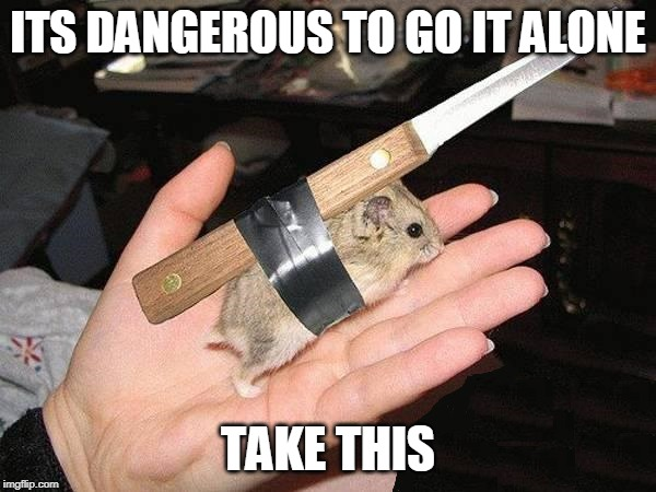KNIFE MOUSE | ITS DANGEROUS TO GO IT ALONE TAKE THIS | image tagged in mouse,wtf,zelda | made w/ Imgflip meme maker
