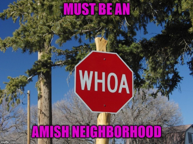 So does this mean you don't have to stop? | image tagged in amish stop sign,memes,amish,funny,whoa,funny signs | made w/ Imgflip meme maker