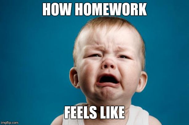 BABY CRYING | HOW HOMEWORK FEELS LIKE | image tagged in baby crying | made w/ Imgflip meme maker