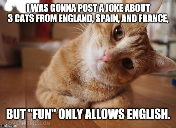 "Happened to notice ""fun"" requires English-only memes. Not complaining, just an observation 