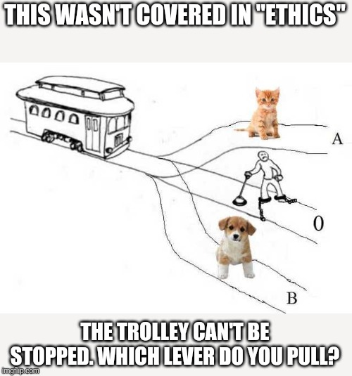 "THIS WASN'T COVERED IN ""ETHICS"" THE TROLLEY CAN'T BE STOPPED. WHICH LEVER DO YOU PULL? 