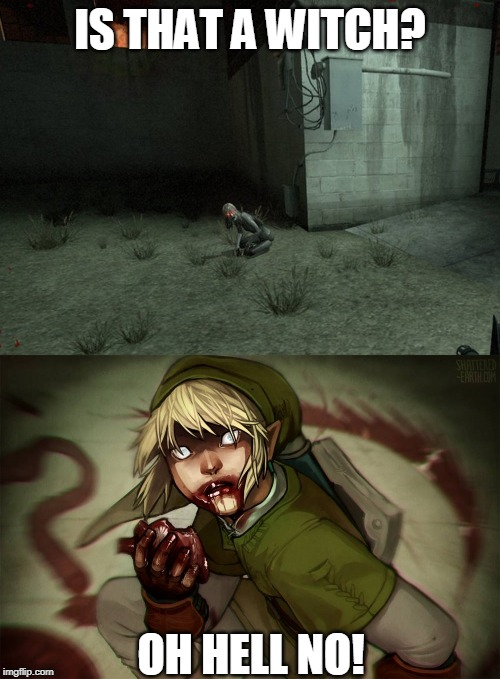 LINK IS A WITCH! | IS THAT A WITCH? OH HELL NO! | image tagged in left 4 dead,link,the legend of zelda | made w/ Imgflip meme maker