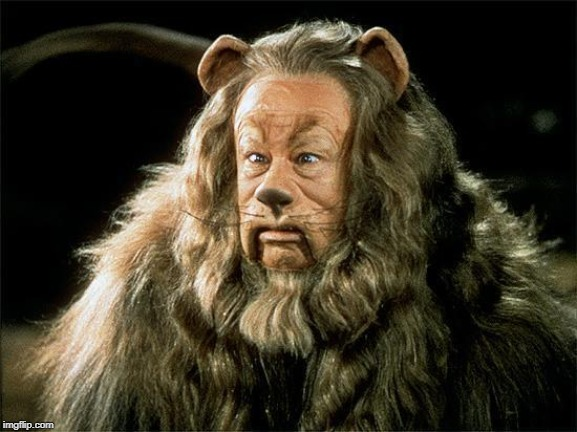 cowardly lion | image tagged in cowardly lion | made w/ Imgflip meme maker